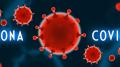 Illustration of Coronavirus 19